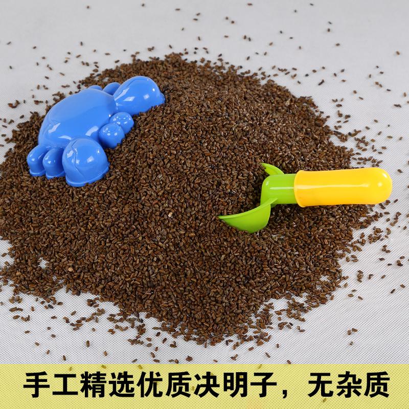 决明子沙子